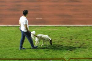 This guy multi-tasked: walking his dog as he listened to party speeches.